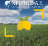 Αγροτικές Επιδοτήσεις ΕΣΠΑ 2017: 1η Πρόσκληση Εκδήλωσης Ενδιαφέροντος για τη δράση 4.2.1 «Μεταποίηση, εμπορία ή /και ανάπτυξη γεωργικών προϊόντων»